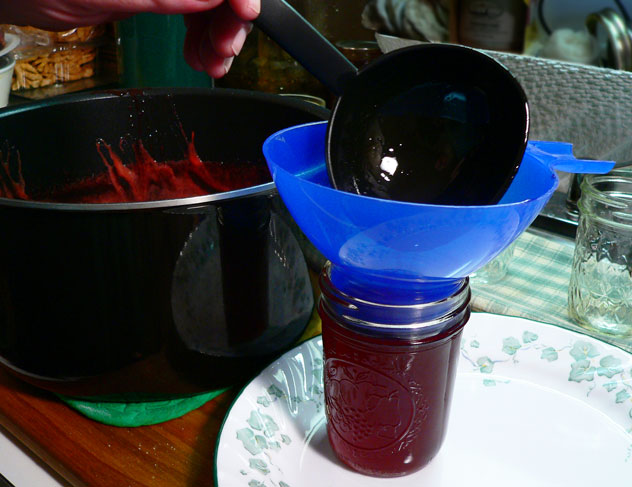 Remove one or two of the sterilized jars from the water in the canning pot. I slide the plate right up next to the juice pot to catch any spills while I fill the jars. Use the funnel and a ladle to place the syrup into the jar.