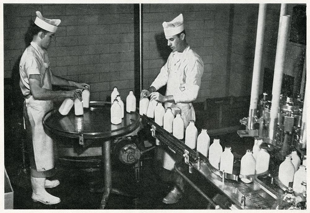 biltmore dairy 3