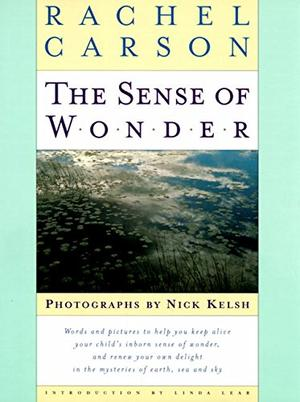 The Sense Of Wonder By Rachel Carson Kirkus Reviews