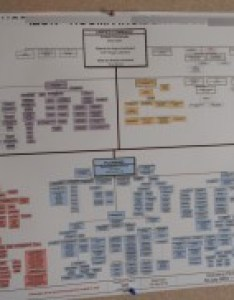 Organizational chart best practices can help you overcome complex org charts like these also for effective rh creately