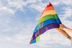Le Conseil scolaire du district catholique de Toronto fera arborer le drapeau LGBT en juin