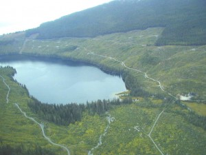 threats to the tongass