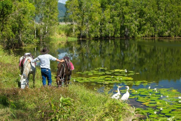 Cairns Horse Riding and ATV Combo Tour
