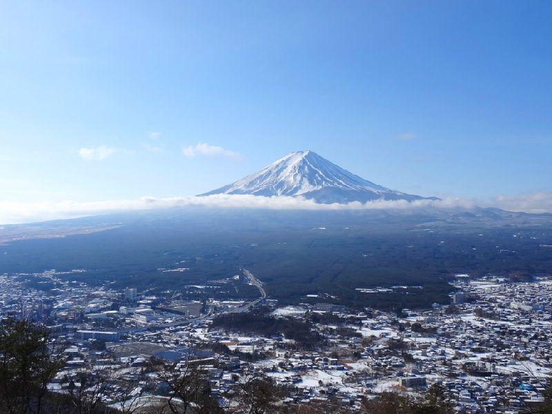 Mt Fuji Day Trip From Tokyo w/ Tenjoyama Park