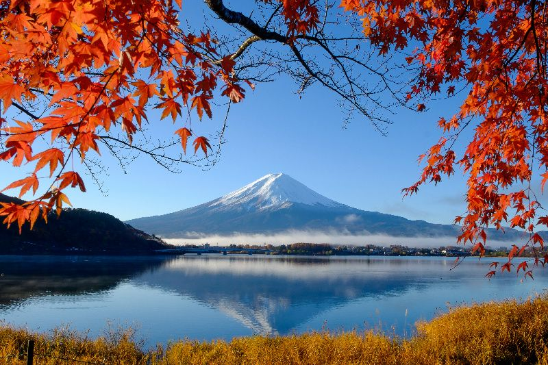 13-Day Tokyo to Sapporo Tour Package