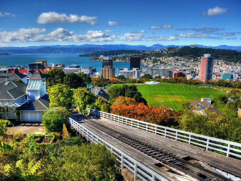 Wellington City Tour