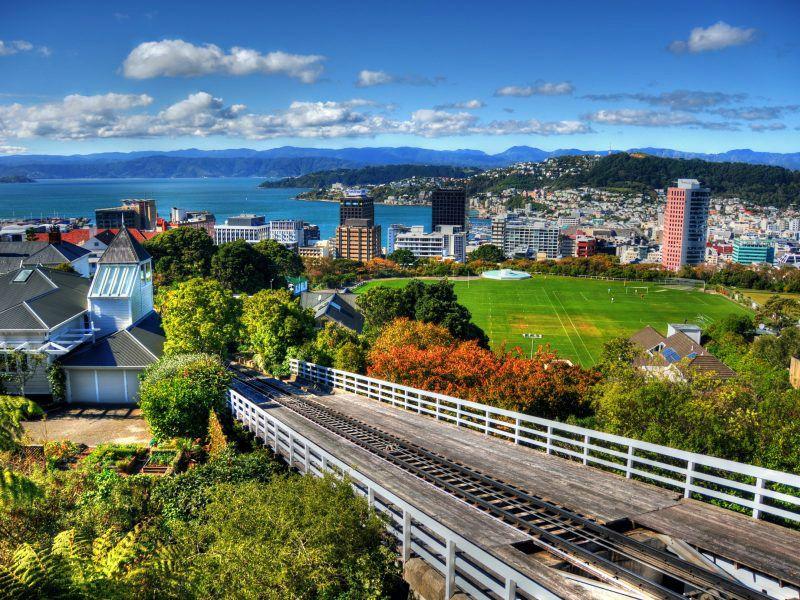 Wellington City Tour