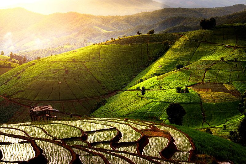 15-Day China Hiking and Cultural Tour: Beijing, Yangshuo, Shanghai