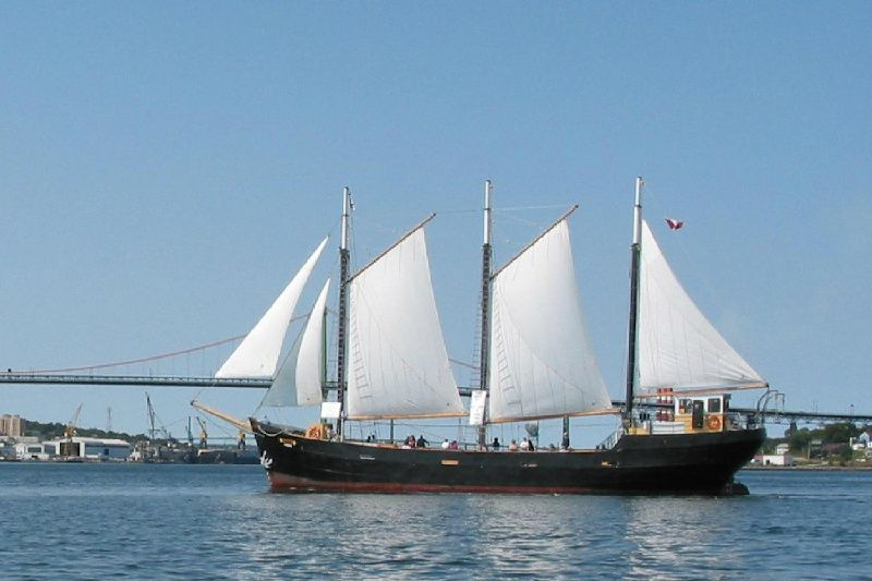 Tall Ship Silva Sailing Cruise from Halifax