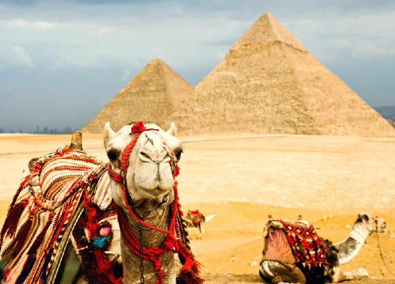 8-Day Cairo Tour & Nile River Cruise