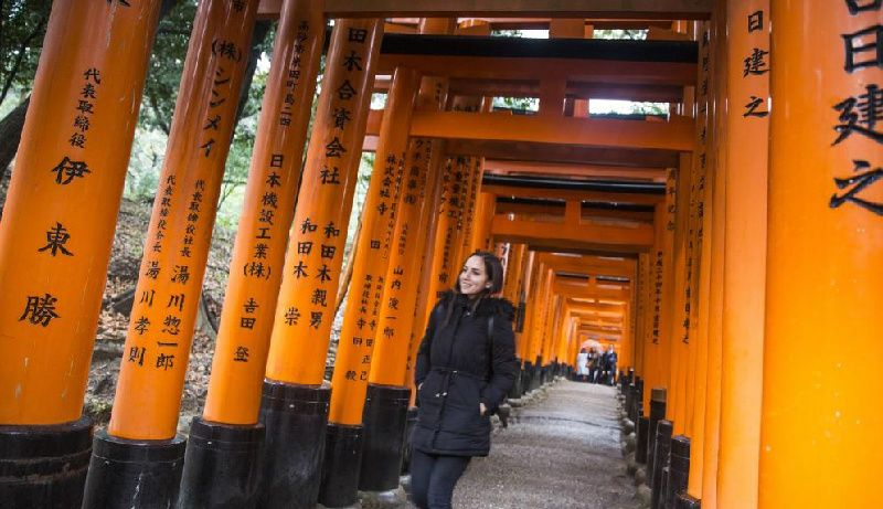 11-Day Classic Japan Adventure Tour: Backroads of Japan
