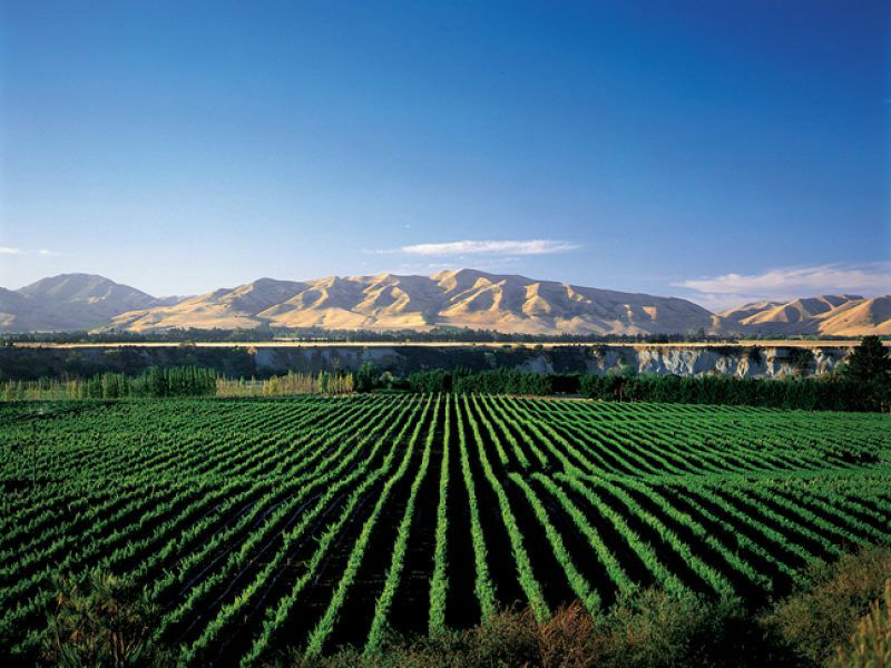 Christchurch Sightseeing Day Tour From Akaroa
