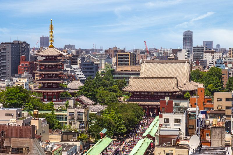 1-Day Old & New Tokyo Bus Tour & TeamLab Borderless Exhibition