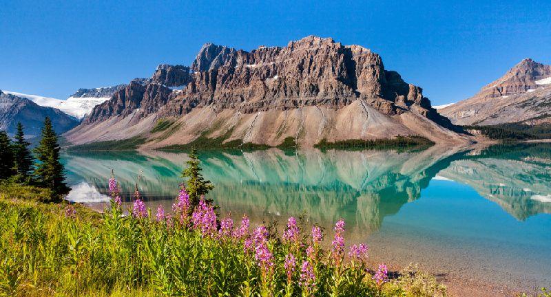 1-Day Rocky Mountains Tour: Bow Lake and Abraham Lake