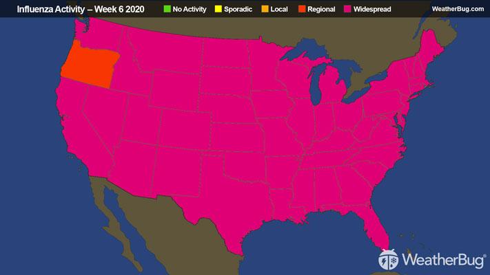 Weekly Flu Update - Flu Season Remains Widespread | WeatherBug