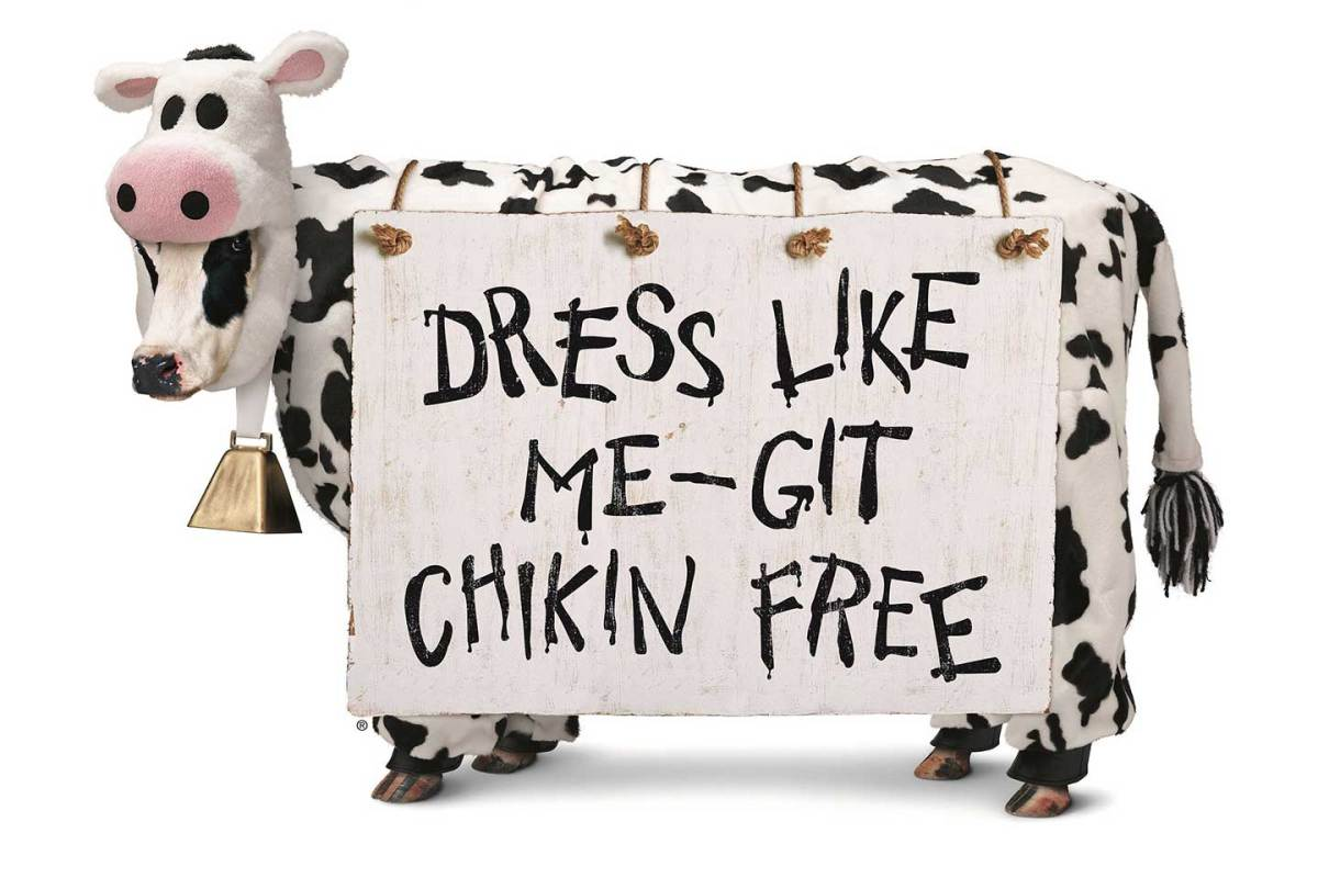 Image result for chick fil a cow appreciation day