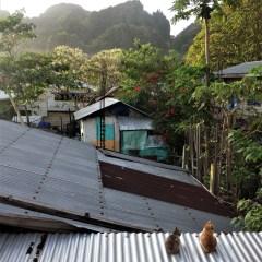 Rangka Baja Ringan Untuk Atap Asbes 2 Cara Mudah Menambal Seng Yang Bocor Rumah123 Com