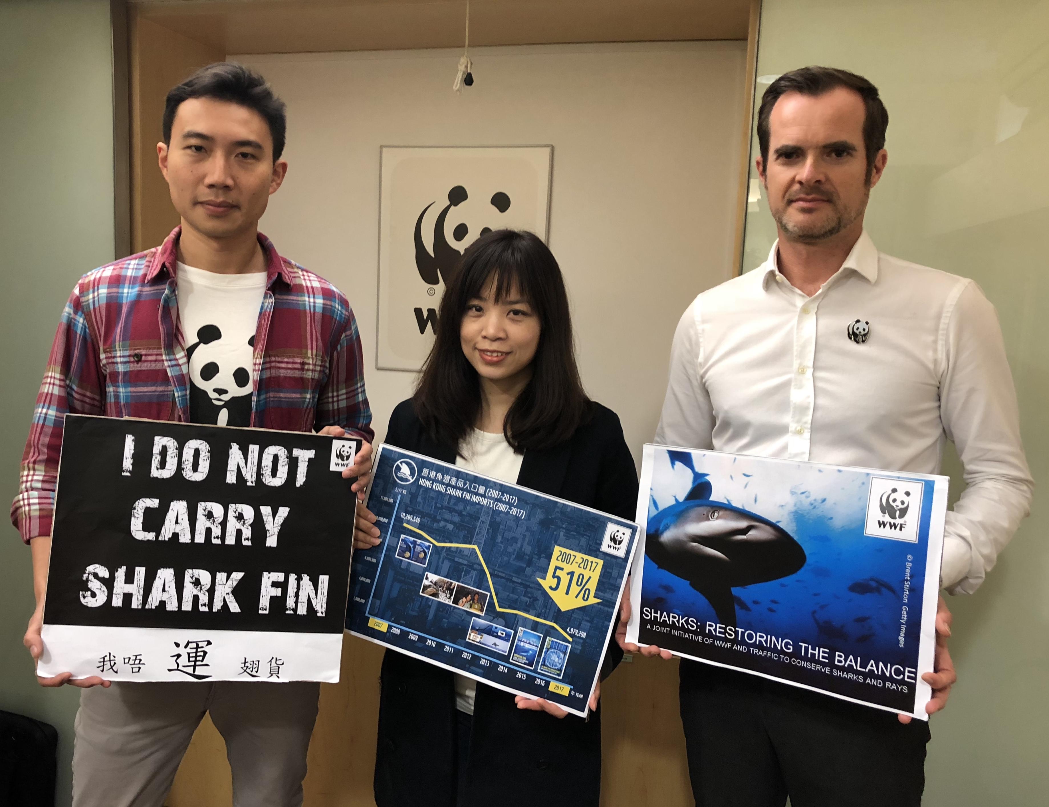 WWF:香港魚翅入口量十年大跌五成 | WWF Hong Kong