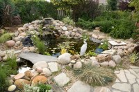 5 Simple Backyard Pond Ideas | Blain's Farm & Fleet Blog