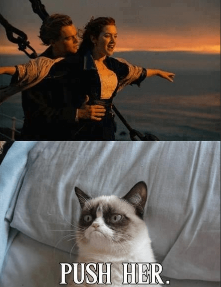 Grumpy Cat and Jack and Rose on Titanic