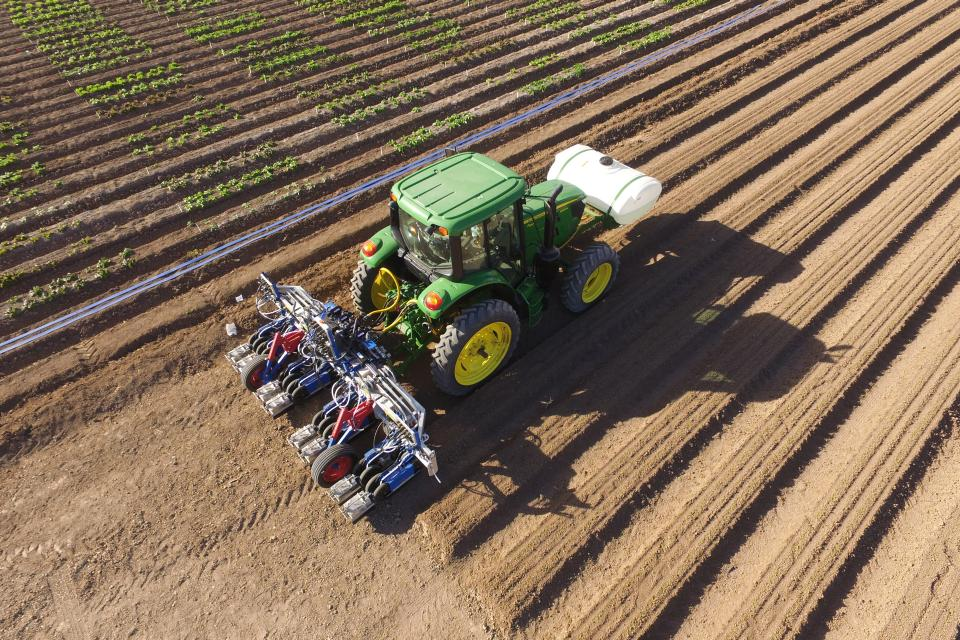 Lettuce thinner on the move in Arizona field
