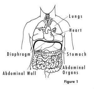 Sandbag Breathing: 30 Days to a Stronger Diaphragm