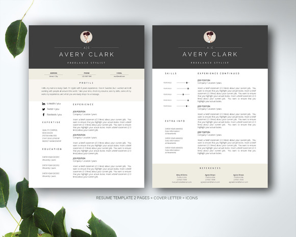 Resume Template For MS Word Resume Templates On Creative