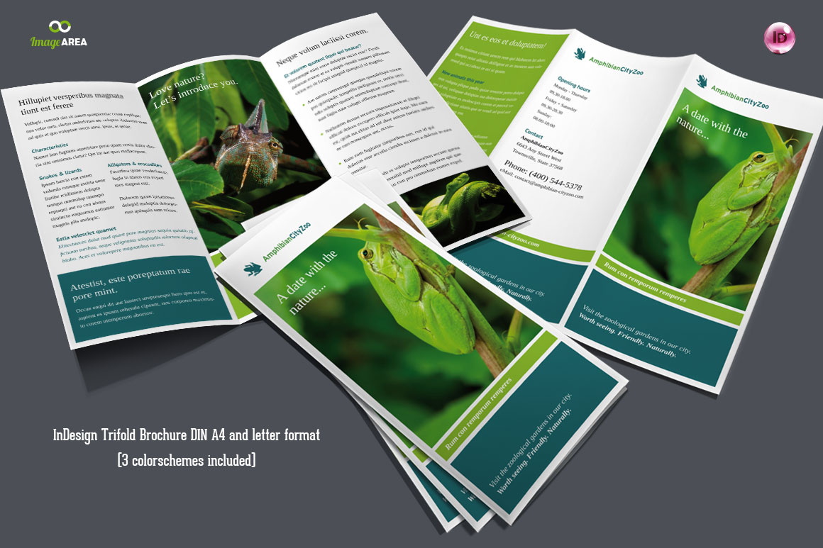 Flexible Trifold Brochure 3 Colors Brochure Templates
