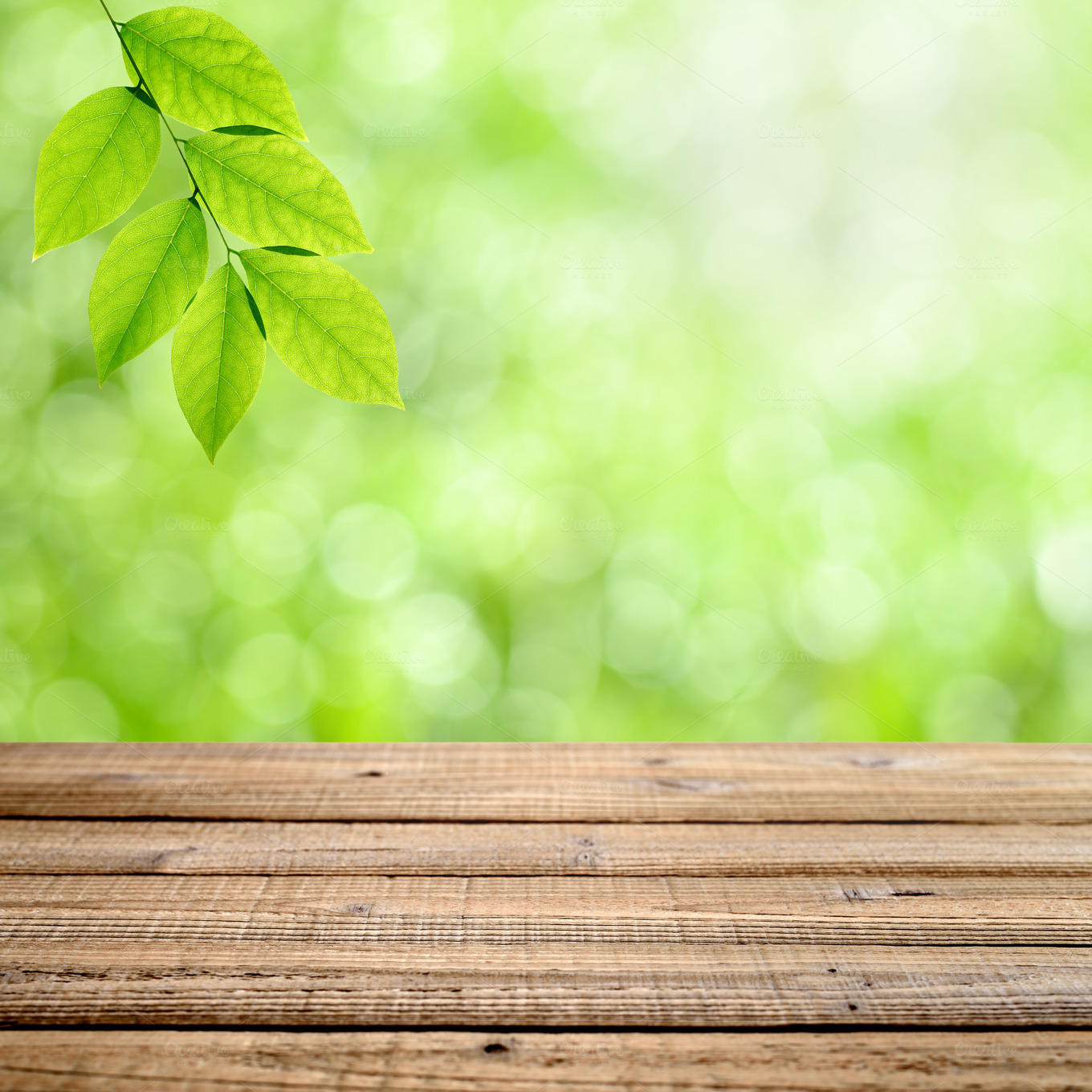 Table with green nature background  Nature Photos on