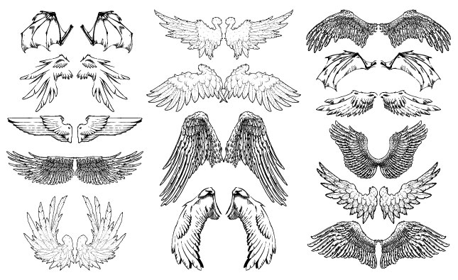Illustrator Vector Set 14 Illustrations On Creative Market