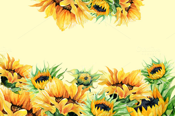 watercolor clipart - sunflowers