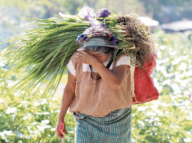 Mujeres de Huehuetenango señalan un trato desigual en cuanto al pago de salarios. (Foto Prensa Libre: Mike Castillo)