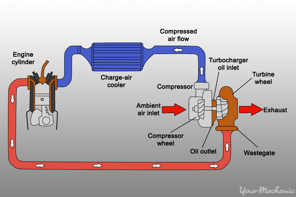 Coil Wiring Harness Free Image About Wiring Diagram And Schematic