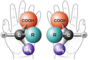 blog__inline--lifes-homochrial-molecules-1