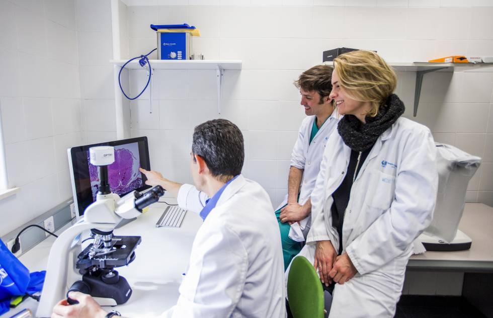 El equipo del doctor Encimas, del Hospital Universitario La Paz, recibió una ayuda de la Fundación Mutua para su investigación.