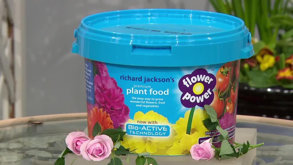 Richard Jackson S 2 4kg Flower Power Plant Food With Bio Active Formula Qvc Uk