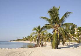 Miami Paradise self drive motorcycle tour, 8 days