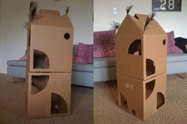 Creare Una Casetta Per Gatti In Cartone