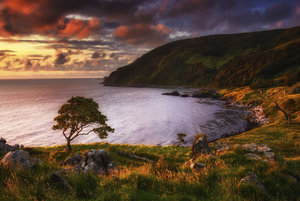 Pyke (Murlough Bay)