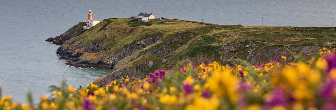 Howth Cliff Path, luswandeling