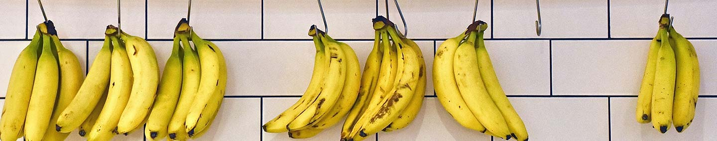 Our Daily Bread 2nd July 2020 Devotional, Our Daily Bread 2nd July 2020 Devotional – Talking Bananas