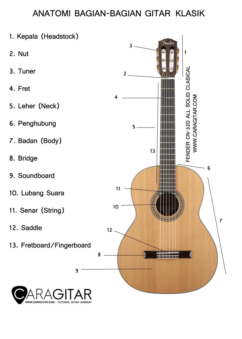 Rumus Gitar : rumus, gitar, Belajar, Gitar, Pemula, 123ish, Indonesia