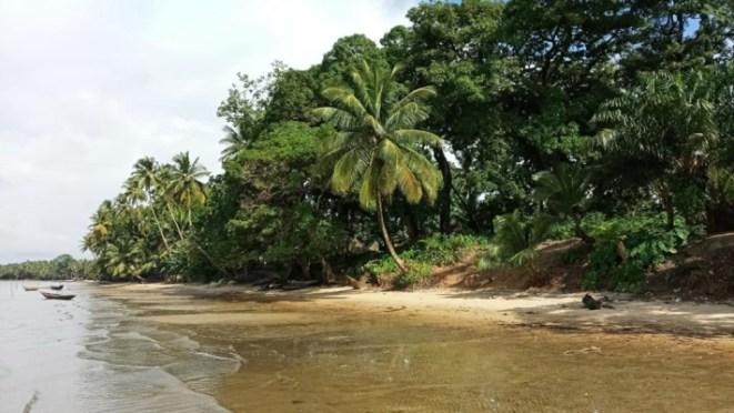 Sherbro Island