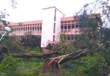 Ferocious cyclone Amphan hits IIM Calcutta