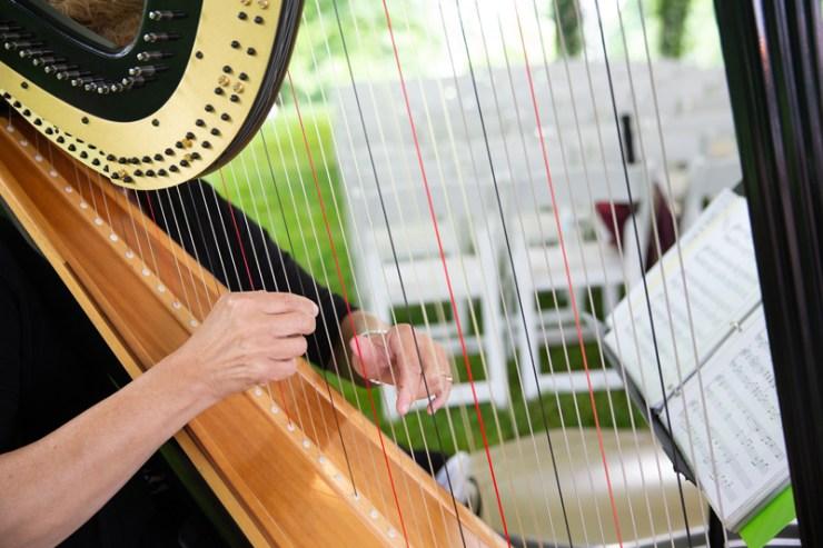 Harpist performing during wedding ceremony at Biltmore.