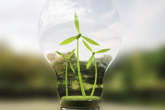 I green bond continueranno a crescere anche nel 2021