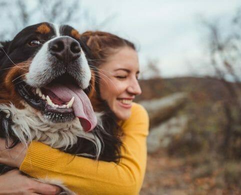 Seguro de protección de mascotas para clientes Davivienda ...