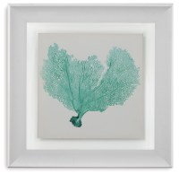Sea Fan VI Wall Art from Bassett Mirror | Coleman Furniture