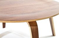 Plywood Coffee Table in Natural from Renegade (EEI-509 ...