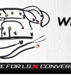 psi standalone wiring harness ls wiring ls wirng harness lsx ls2 wiring harness conversion [ 1583 x 500 Pixel ]